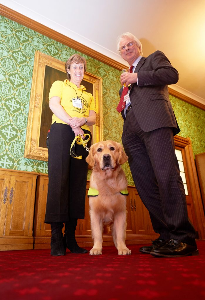 15 PAT dog Leo and Lord Trees